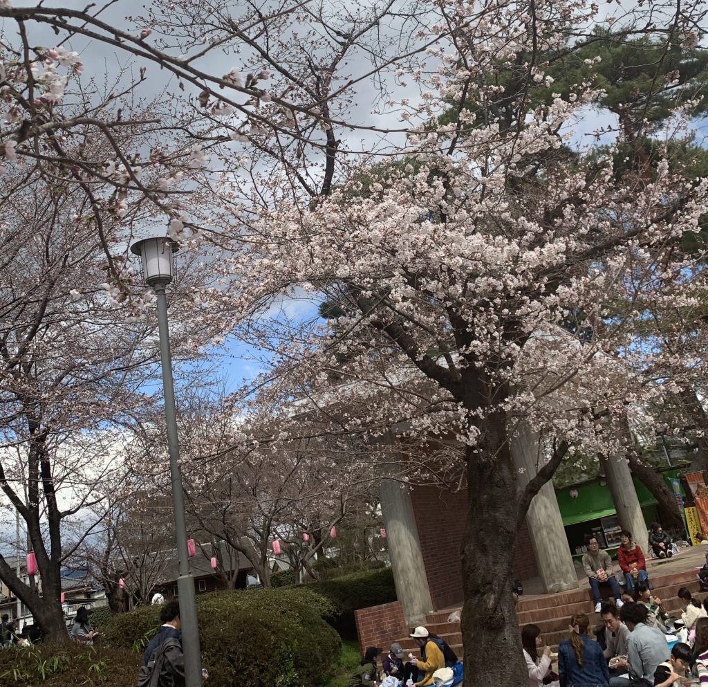 群馬県 伊勢崎市 遊園地 華蔵寺 公園