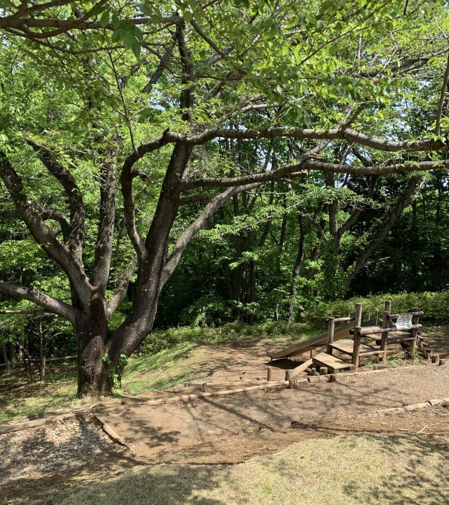 埼玉県 小川町 公園