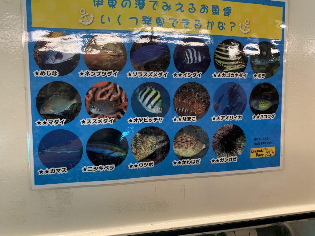 ゆーみんフック船 見られる魚