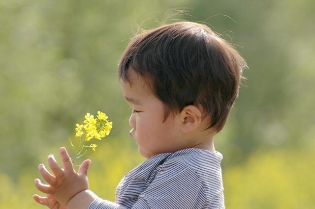 発達障害ADHDブログ